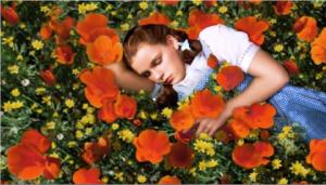 Dorothy_in_poppy_field