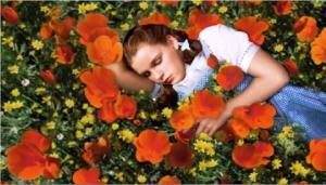 Dorothy_in_poppy_field